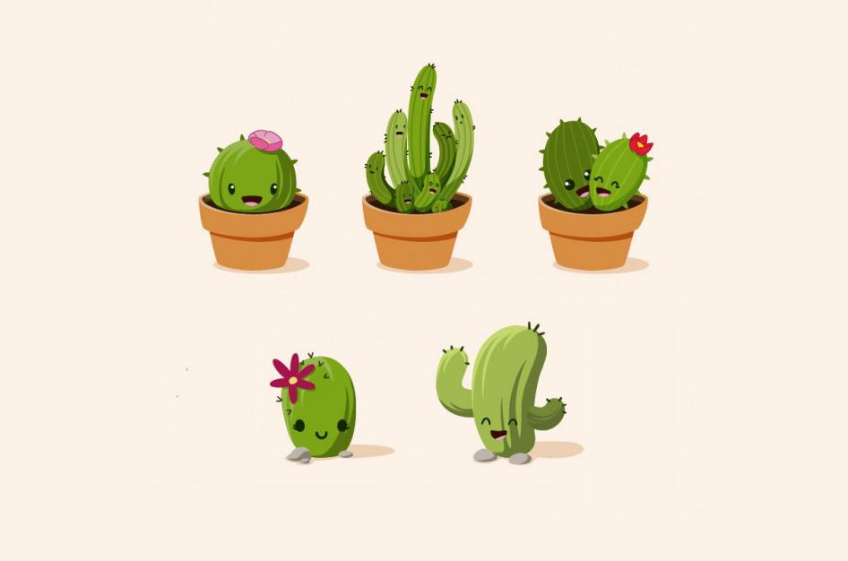 ¿Quieres buenas energías en tu hogar? ¡Hazte con estas plantas!